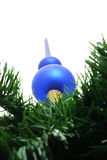 Blue christmas tree top . Stock Photography