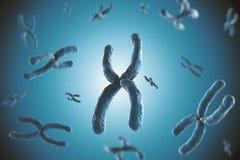 Blue chromosome. 3d rendering blue chromosome on blue background stock photo