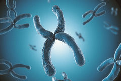Blue chromosome. 3d rendering blue chromosome on blue background royalty free stock photos