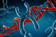 Blue chromosome. 3d rendering blue chromosome with dna helix on blue background royalty free stock images