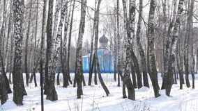 Blue church in birch grove in winter. stock video footage