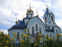 Blue Church with Golden domes in the city of Sosnovoborsk in Krasnoyarsk Krai and yellow flowers irises in the spring stock photos