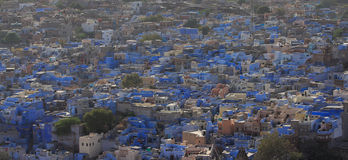 Blue City Jodhpur Stock Photography