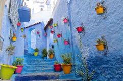 Blue city street with colorful flower pots Royalty Free Stock Photos