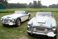 Blue classic convertibles. Two classic open-top metallic blue austin healey's, model 3000 mk III, standing outside royalty free stock image