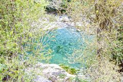 Blue clear lake in the middle of the forest Royalty Free Stock Image