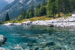 A blue clear mountain river. The blue clear mountain river Stock Image