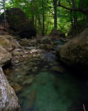 Blue clear water of mountain stream Royalty Free Stock Photo