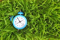 Blue clock on green grass Stock Photo