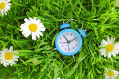 Blue clock on green grass Royalty Free Stock Photo