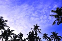 Blue cloud sky Royalty Free Stock Image