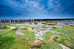 Blue clouded sky over coast mud at low tide Stock Images