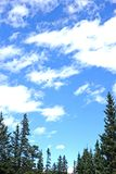 Blue Cloudy Sky with Arched Tree Line Royalty Free Stock Images