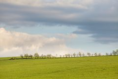 Blue cloudy sky over green hills. And line of trees royalty free stock image