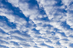 Blue cloudy sky. Stock Photography