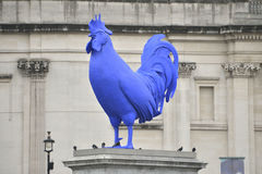 Blue cock in Trafalgar Square Royalty Free Stock Images