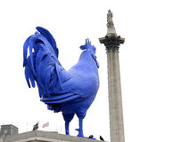 The Blue Cock in Trafalgar Square,London,England Stock Images