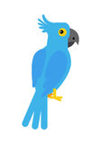 Blue Cockatoo Parrot Royalty Free Stock Photography