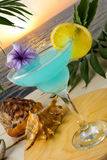 Blue cocktail on the tropical sea sunset background Stock Image