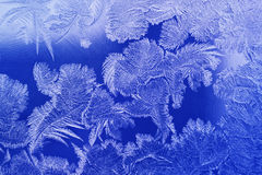 Blue color frosty pattern. On glass winter window stock photos