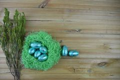 Easter time with shiny wrapped chocolate easter eggs in a nest in blue and green with springtime branches. Blue color shiny foil wrapped chocolate Easter eggs Royalty Free Stock Photos