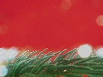 Blue colored christmas background with Christmas tree branch in green. royalty free stock photography