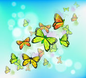 A blue colored stationery with butterflies Royalty Free Stock Image