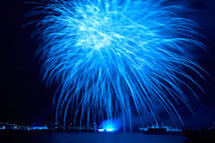 Blue colorful fireworks Stock Image