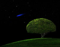 Blue Comet. Blue shooting star in a night sky with one tree on a hillside Royalty Free Stock Image