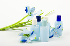 Blue Composition: Cosmetics with Flower. Perfume bottles with artificial blue astroemeria Royalty Free Stock Image