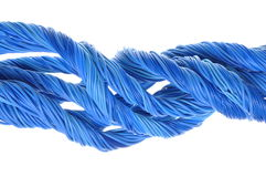 Blue computer cables Stock Images