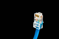 Blue computer ethernet cable isolated on black background, close-up Royalty Free Stock Images