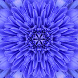 Blue Concentric Flower Center Mandala Kaleidoscopic design Stock Photo