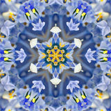 Blue Concentric Flower Center. Mandala Kaleidoscopic design Royalty Free Stock Photos