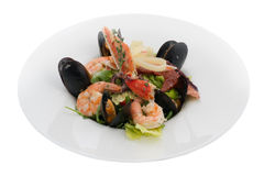 Blue cooked mussels with shrimps Stock Image