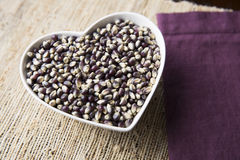 Blue Corn Heart Stock Images