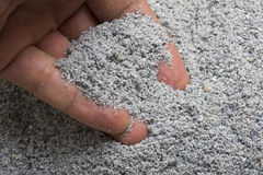Blue corn meal. Closeup hand scooping pile of fresh ground blue corn meal Stock Photos