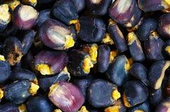 Blue corn pozole Stock Image