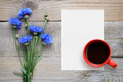 Blue cornflowers, blank paper and coffee cup Royalty Free Stock Photography