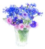 Blue cornflowers on white stock photo