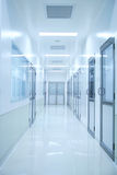 Blue corridor Royalty Free Stock Images