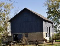 Blue Barn with White horse on the side - in the country. Stock Photo