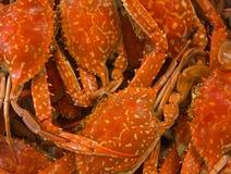 Blue crab boiled Stock Photos