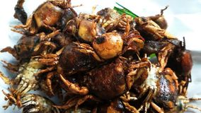 Blue crab. Deep fried blue crab Royalty Free Stock Photography