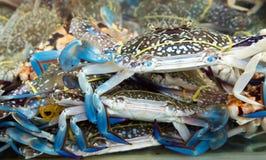 Blue crab seafood c fish market Stock Photos