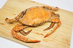 Blue crab Stock Photos