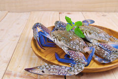Blue crab on the wood table Royalty Free Stock Images