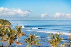 Blue crashing waves in ocean and coconut palms on a cost in Bali. Blue crashing waves in ocean and coconut palms on a cost Royalty Free Stock Photography