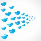 Blue creative bird background. Stock Stock Photography