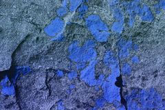 Blue creative rough lichen on stone texture - pretty abstract photo background royalty free stock photography